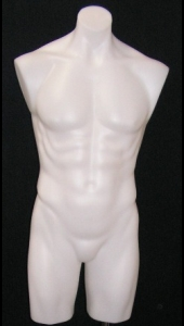 White Male Bench Torso